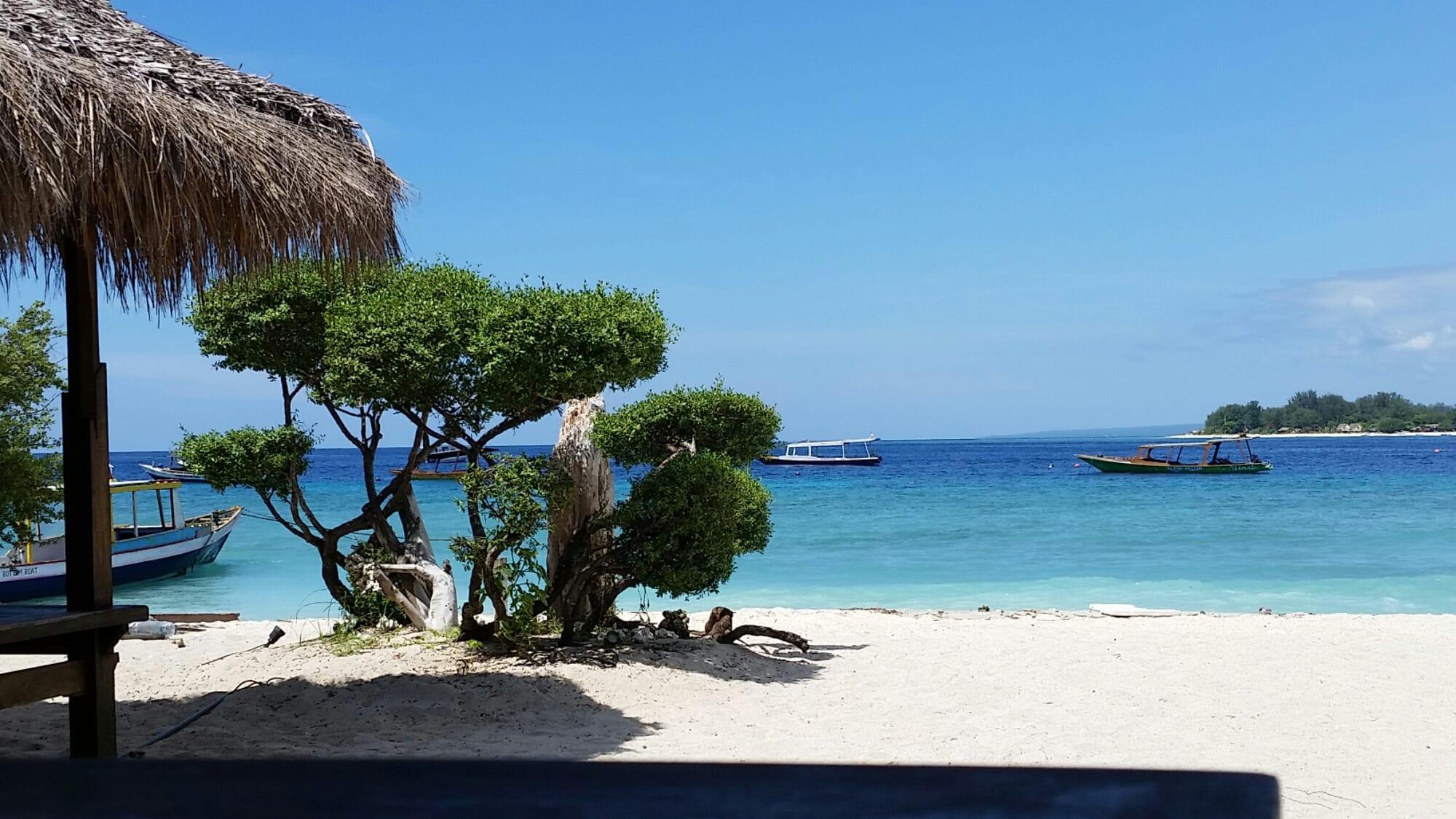 Bali cover image